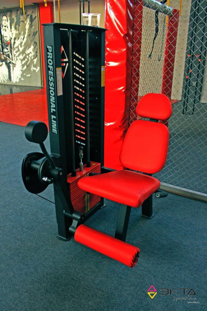 ТС-204, Тренажер для мышц разгибателей бедра, сидя