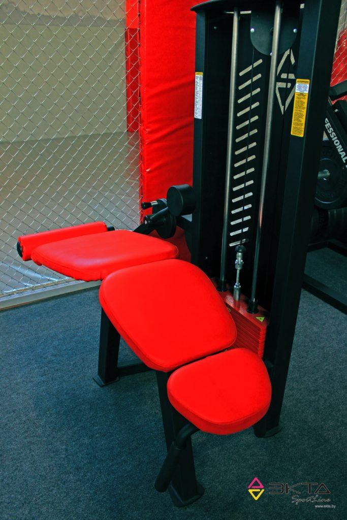 ТС-205, Тренажер для мышц сгибателей бедра, лежа
